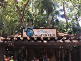 Animal Kingdom Disney Vacation Club kiosk