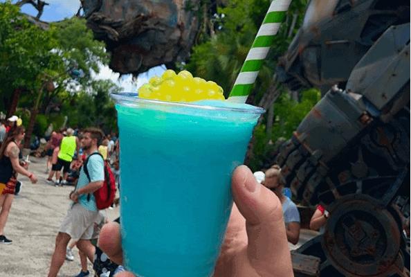 Mo'ara Margarita at Disney's Animal Kingdom