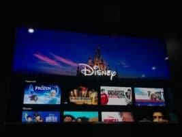 Sneak Peek of Disney+ at D23 Expo