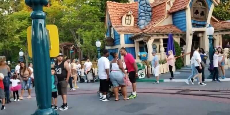 Disneyland Fight Conviction