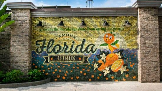 orange bird wall