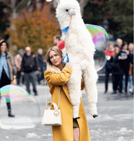 Lizzie McGuire Alpaca