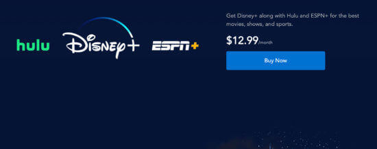 Disney Plus Bundle