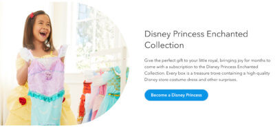 Disney Princess Subscription box