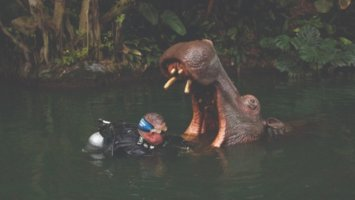 disneyland diver Thomas Self working on a hippo in the Jungle Cruise