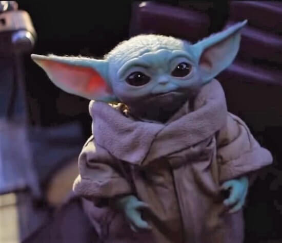 Baby Yoda Wins the Web the Child
