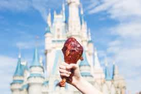 Disney World Turkey Leg