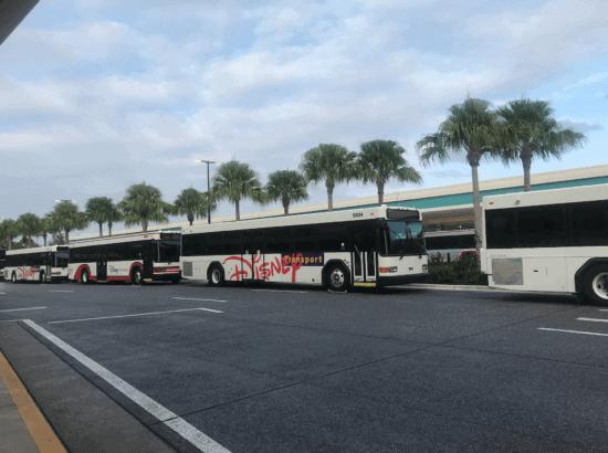 Disney World Bus