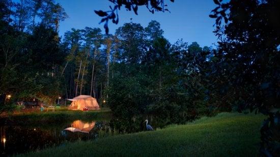 campsites at fort wilderness resort