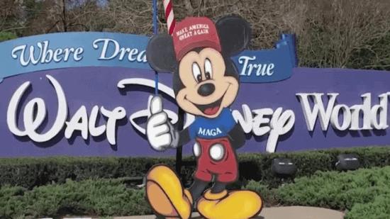 Trump Supporters Disney World