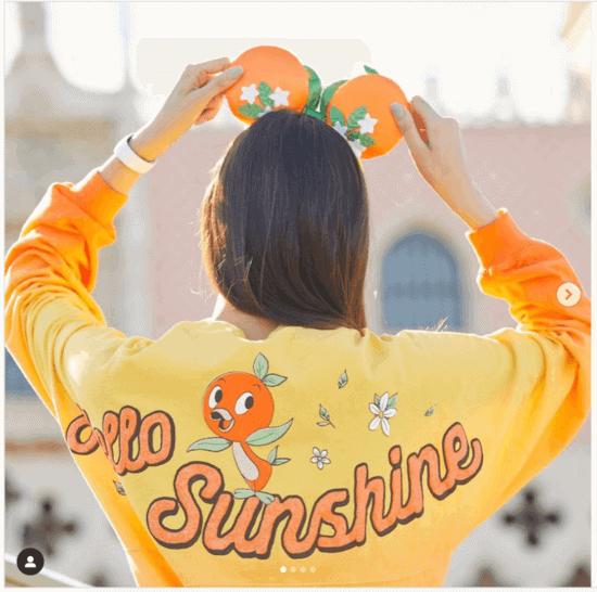 Orange Bird Merchandise from EPCOT