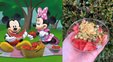 Disney Food and Wine Festival Poke-style Watermelon