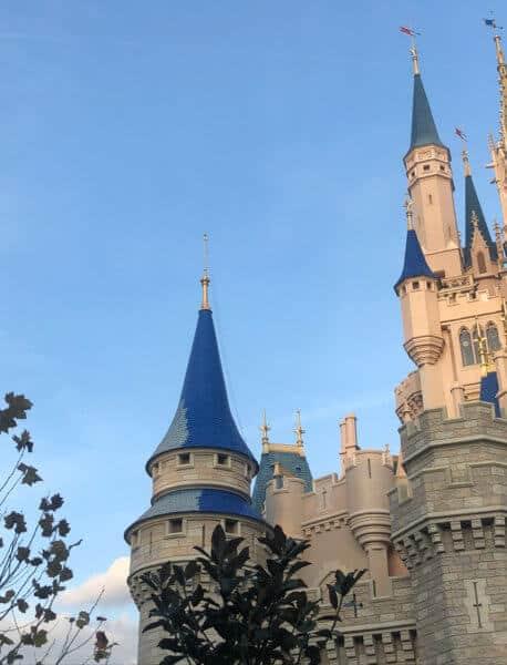 Cinderella Castle Spire Paint