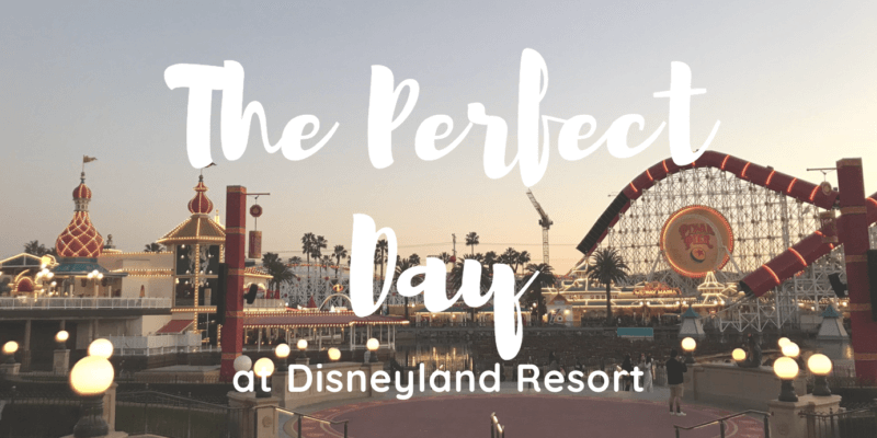 DLR Perfect Day Header