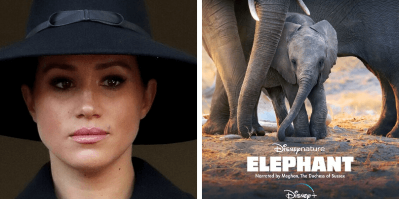 Meghan Markle Disney Documentary bad reviews
