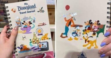 Disneyland Travel Journal