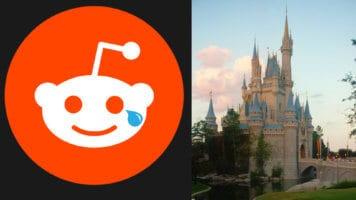 Reddit Logo and Cinderella Castle