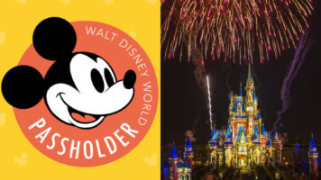 Disney World Annual Pass Cinderella Castle