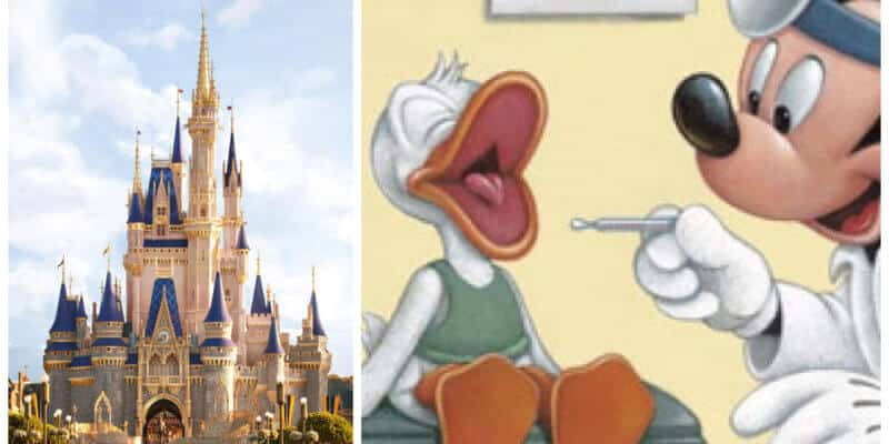 Cinderella castle and Donald Duck with Dr Mickey Mouse