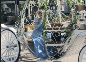 Cinderella Drives through Orlando Neighborhood