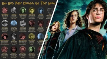 Harry Potter Name Infographic
