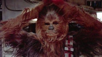 Chewbacca relaxing