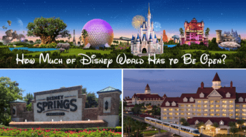 How Much of Disney World Has to Be Open