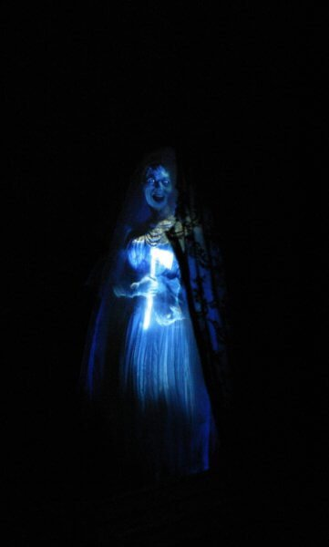 Haunted Mansion and Tower of Terror HM Bride