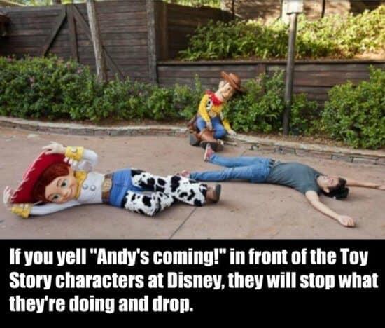 Andy's Coming Walt Disney World