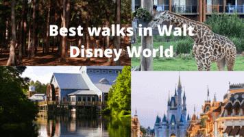 Best walks in Walt Disney World