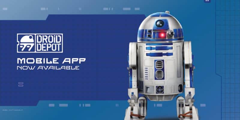 Droid Depot App