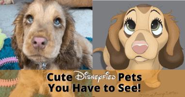 Disneyfied Pets