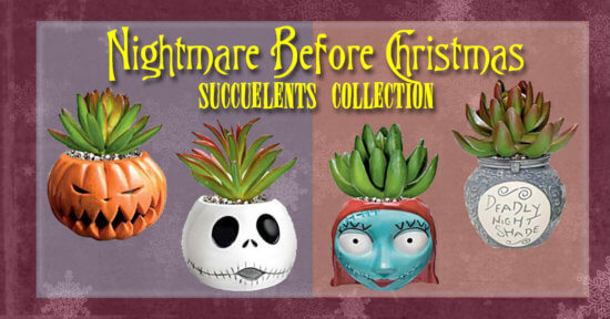 Nightmare Before Christmas Succulent Collection