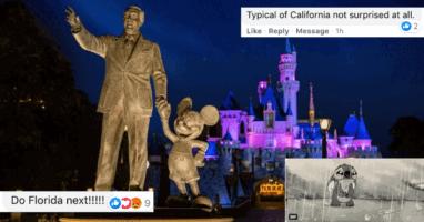 Disneyland Fans Reactions