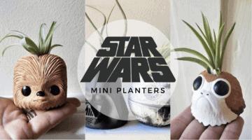 star wars planters header