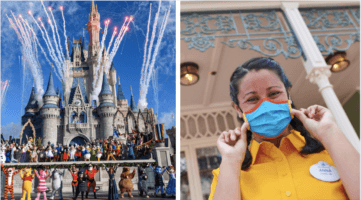 wdw face mask guidelines header