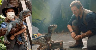 New Baby Velociraptor Universal