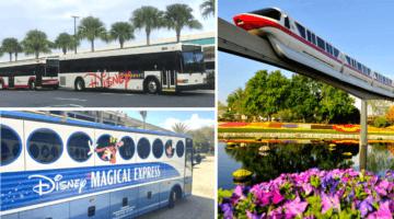 disney world transportation reopening