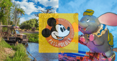 wdw annual pass
