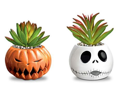 Nightmare Before Christmas Succulents