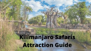 Kilimanjaro Safaris attraction guide
