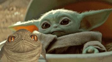 Rotta and Baby Yoda