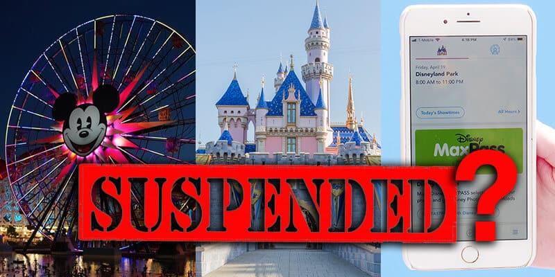 Disneyland resort maxpass