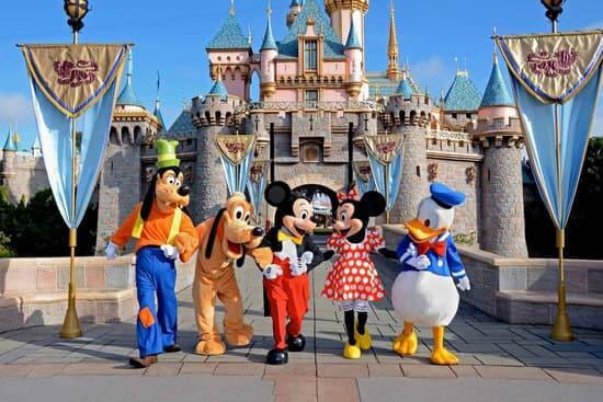 Disneyland Park Reservation System