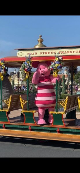 piglet in magic kingdom