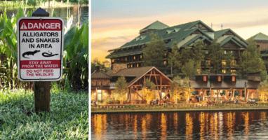 NBA Walt Disney World Nature