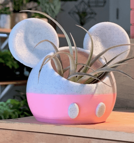 pick minnie mouse planter