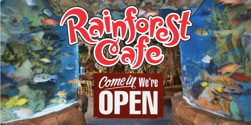 rainforest cafe reopen header