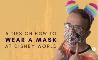 how to wear a mask at disney header