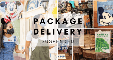 package delivery suspended